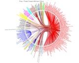 DNA för nybörjare 4 - FTDNA
